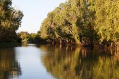 Glimpse of Yellow Water Billabong
